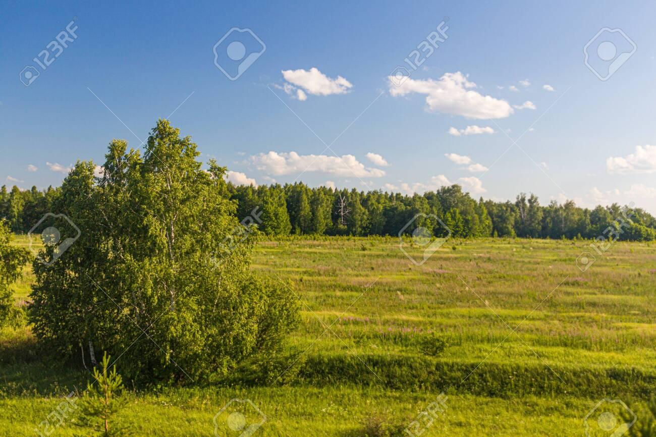 Landscape of Russia in Volgograd Oblast region - 150636663