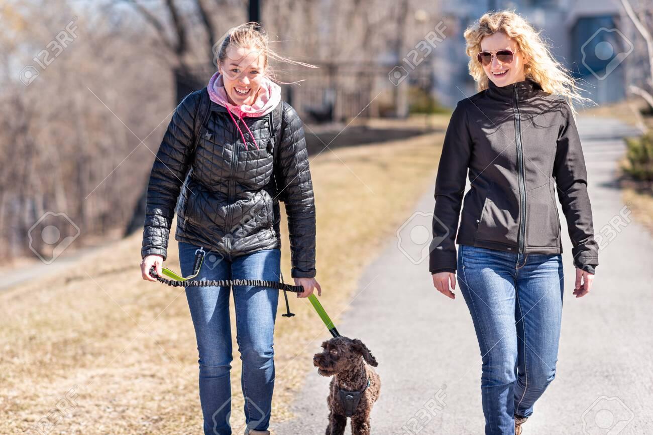 Two blond women friends walking a dog - 147211063