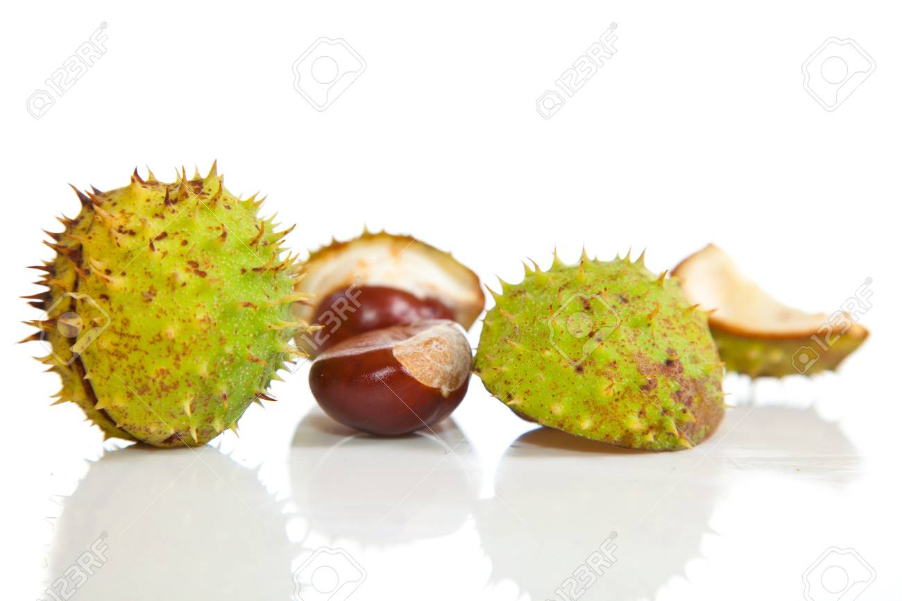 Composition of autumn chestnuts and leaves on isolated background Stock Photo - 7779819
