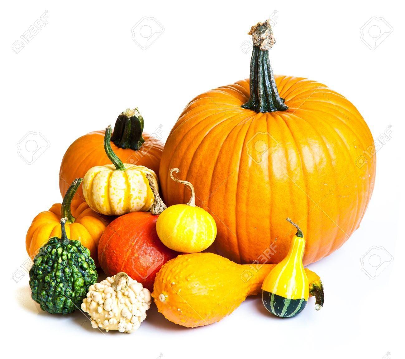 Ripe pumpkin fruits isolated on white Stock Photo - 10546559