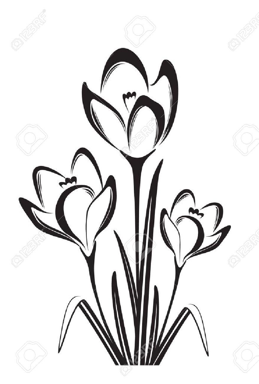 Black white vector illustration of spring flower Stock Vector - 18001112