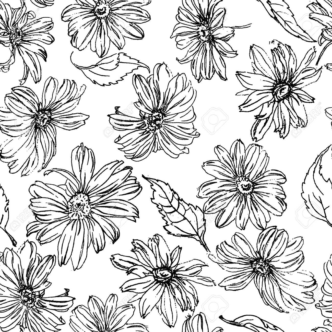 Flores De Manzanilla Y Hojas Patrón De Ornamento Dibujado A Lápiz ...