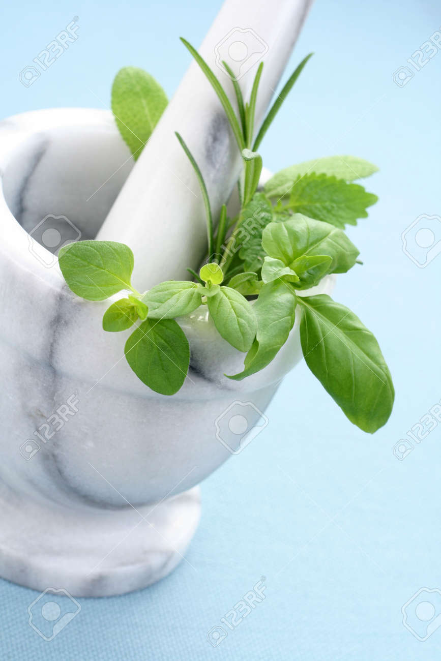 mortar and pestle full of various herbs Stock Photo - 3008660