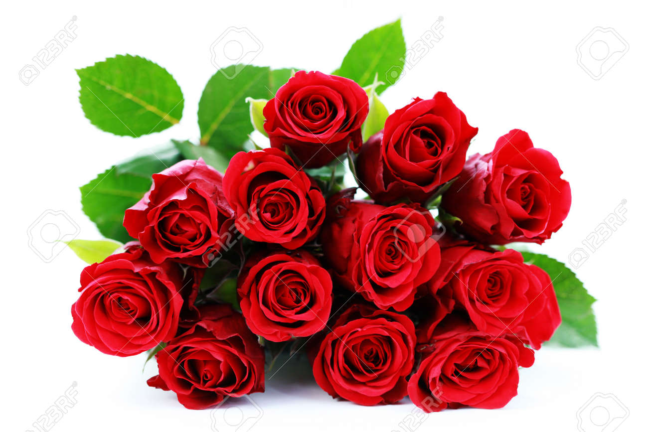 Bunch of red roses on white background flowers and plants stock bunch of red roses on white background flowers and plants stock photo 6166649 dhlflorist Image collections
