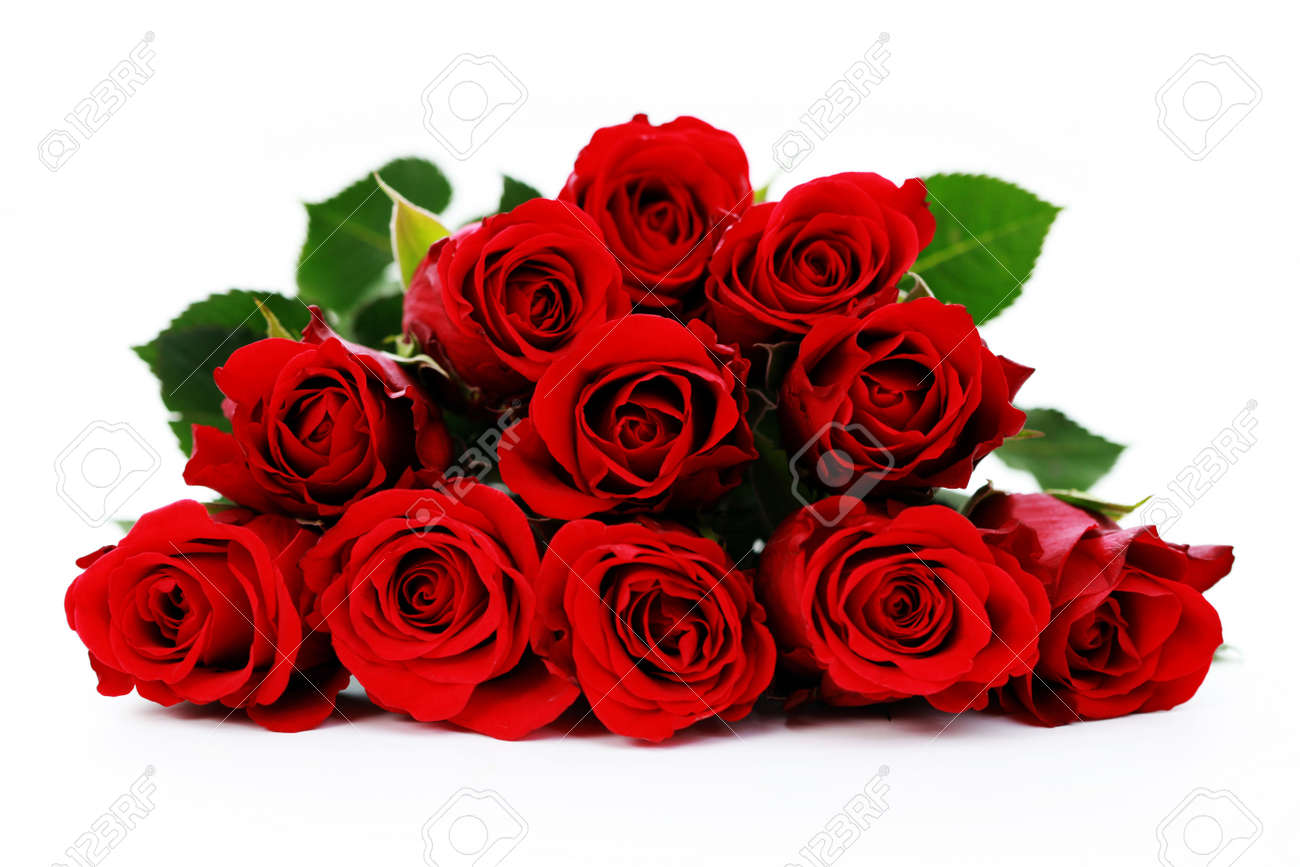Bunch Of Beautiful Roses Flowers And Plants Stock Photo Picture