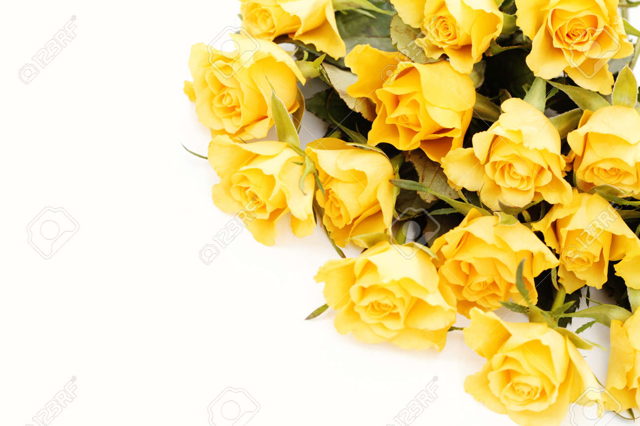 Bunch of lovely yellow roses flowers and plants stock photo bunch of lovely yellow roses flowers and plants stock photo 8935307 dhlflorist Image collections