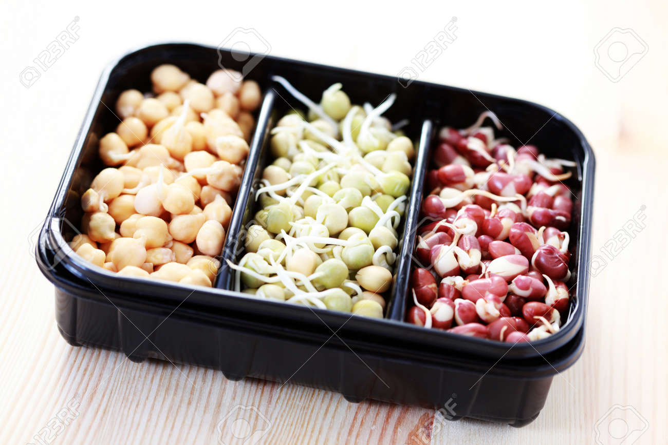 box of different vegetable beans sprouts - food and drink Stock Photo - 9015644
