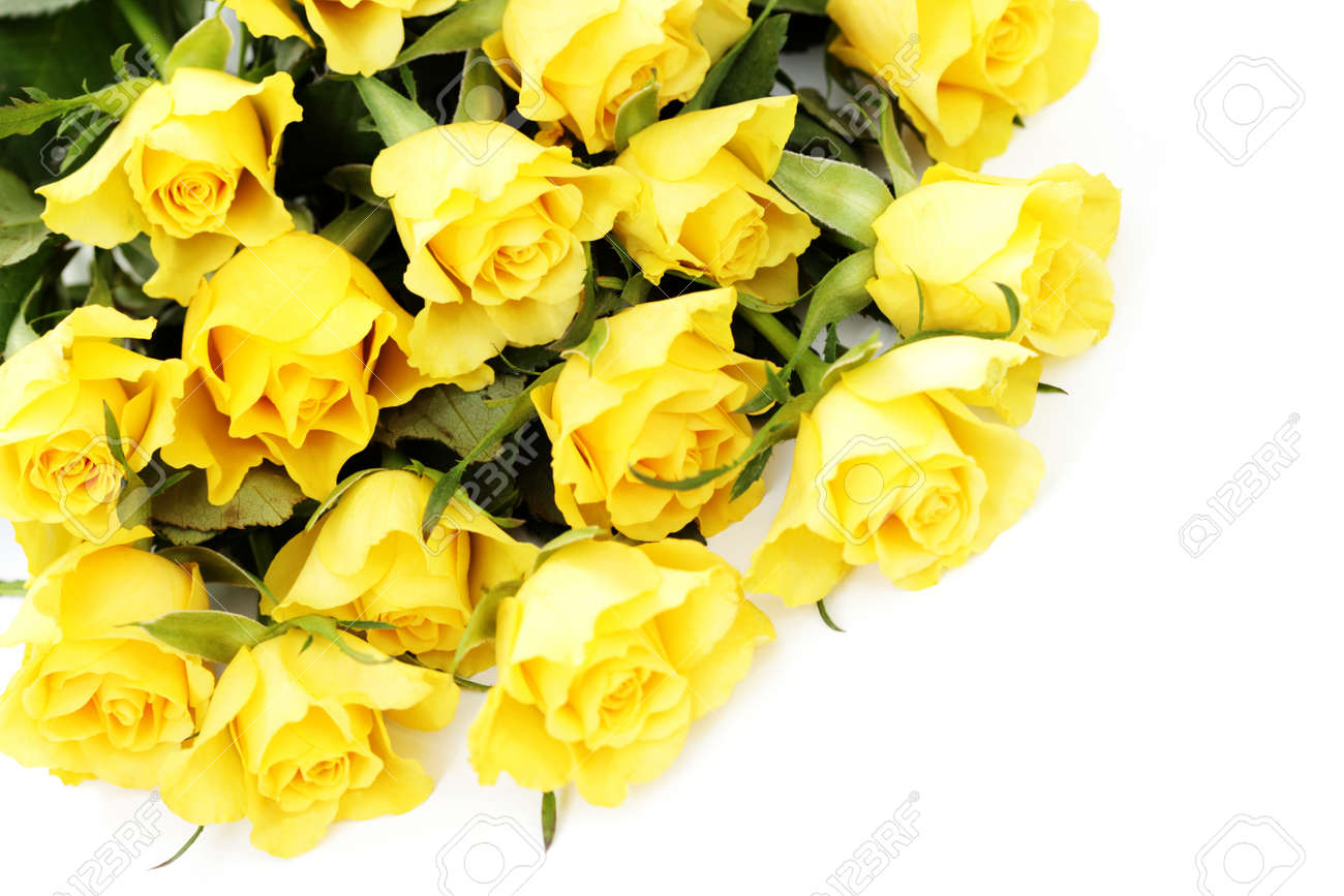 Bunch Of Lovely Yellow Roses Flowers And Plants Stock Photo