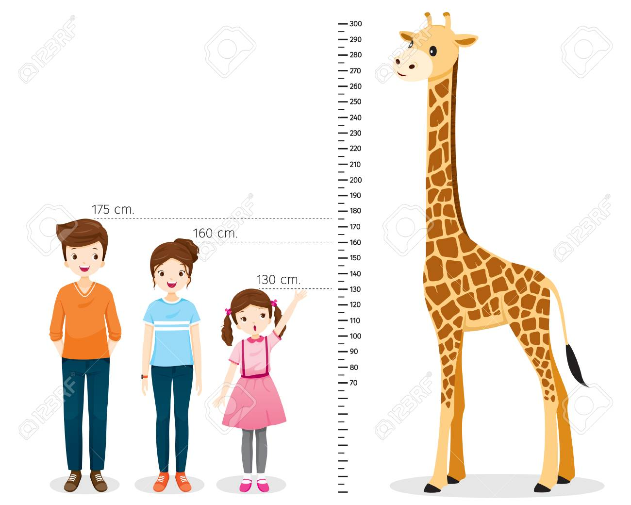 Man, Woman, Girl Measuring Height With Giraffe, Tall, Healthy, Care, People, Lifestyle - 121826791