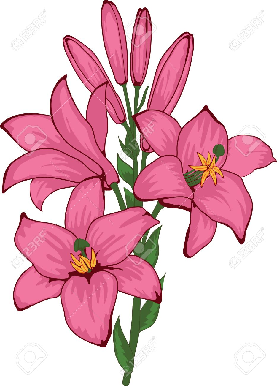 Flower a lily element for design illustration royalty free flower a lily element for design illustration stock vector 8783336 dhlflorist Images