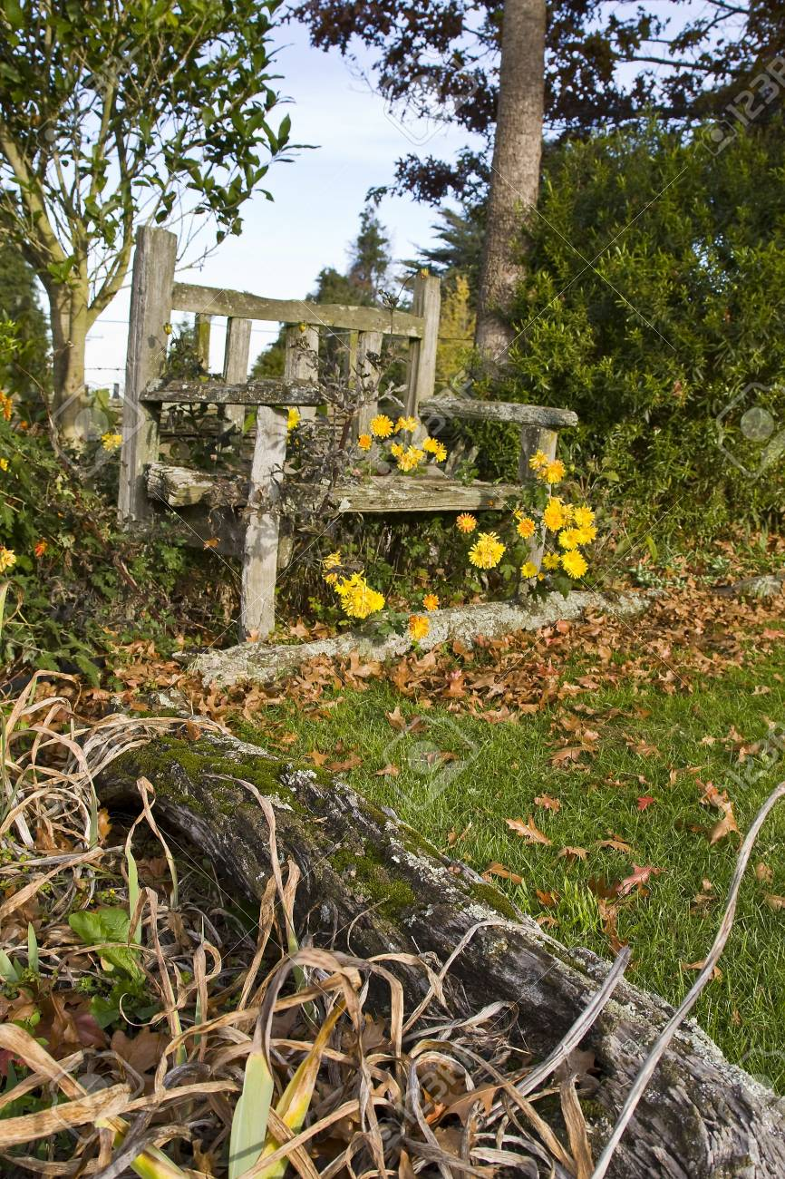 Vieux Banc De Jardin vieux banc de jardin en bois à l'automne