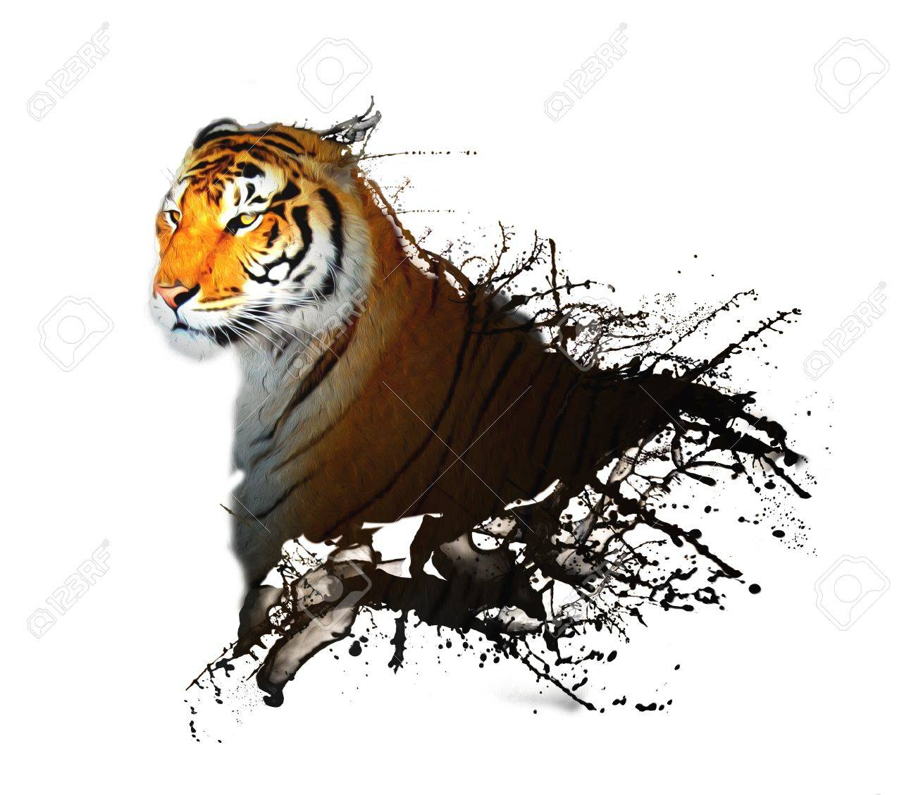 Stock photo tiger and sketches with ink effect