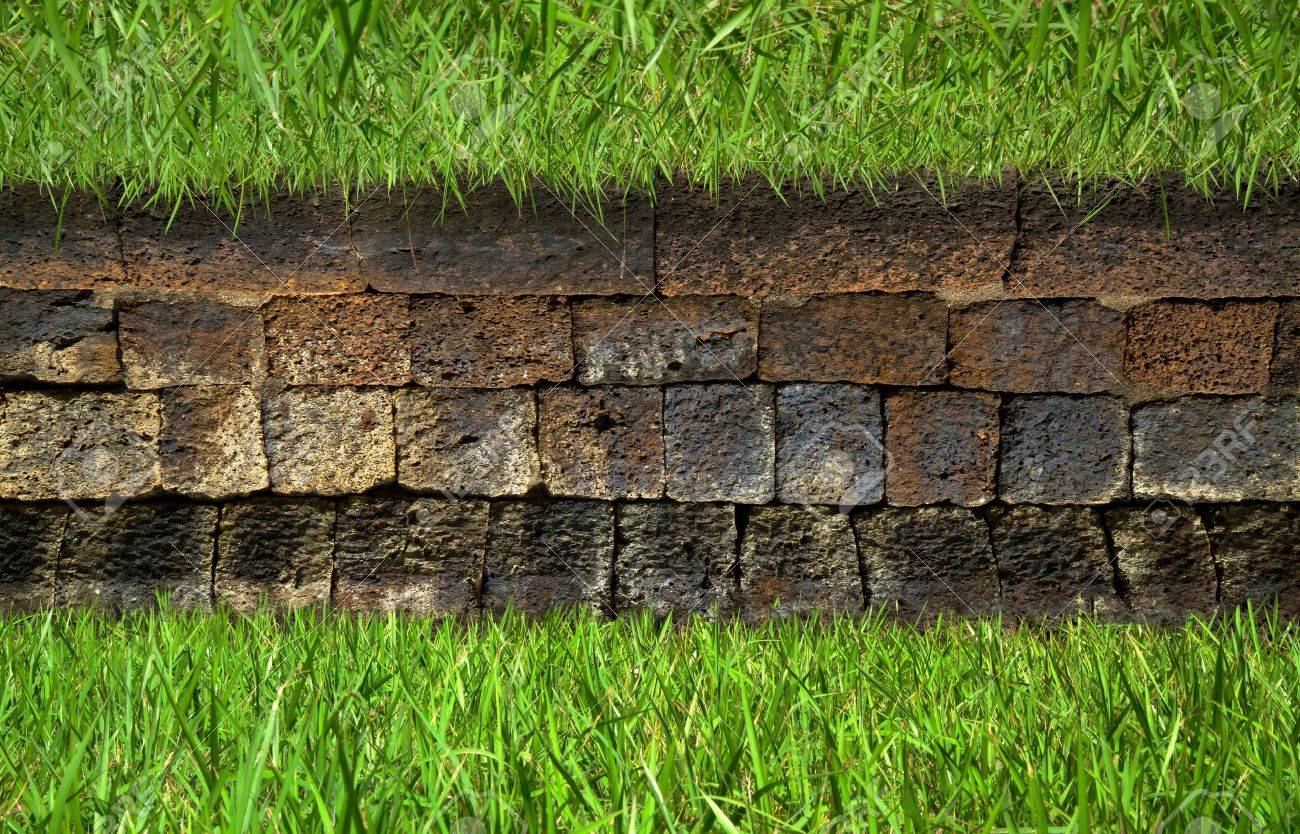 Brick Driveway With Grass Grass on Old Brick Wall