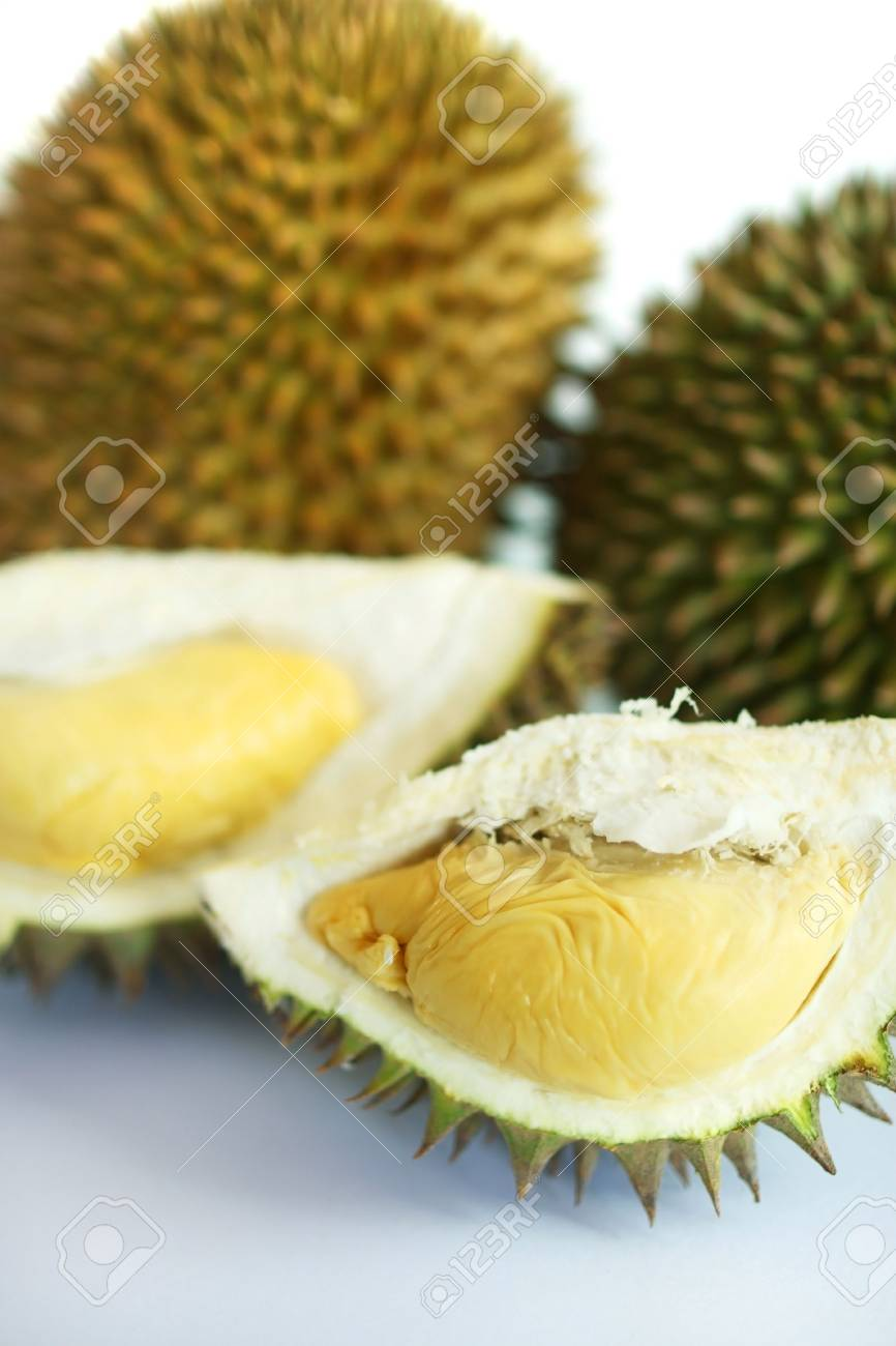 Close up of durians isolated on white background. - 5129471