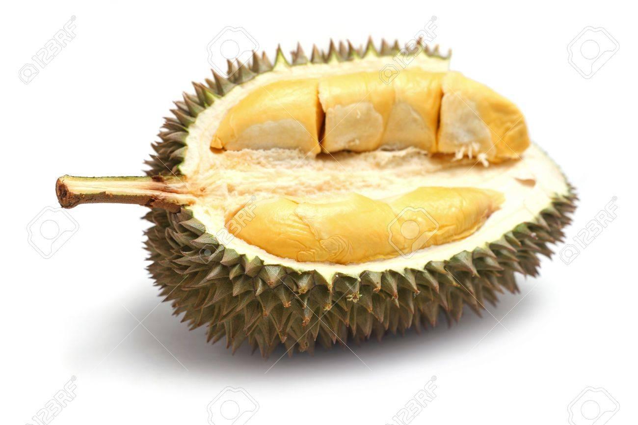 Close up of peeled durian isolated on white background. - 7467314