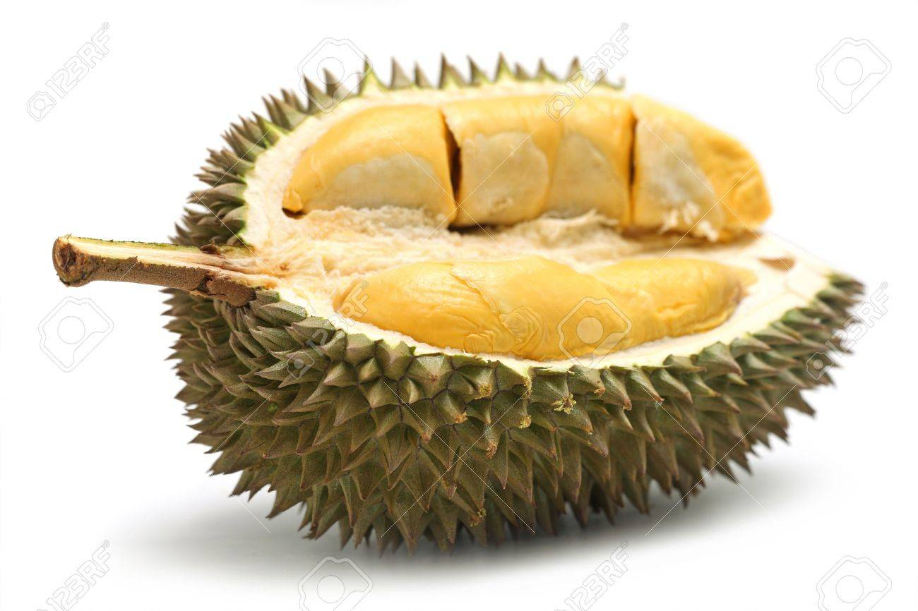 Close up of peeled durian isolated on white background. - 7500794