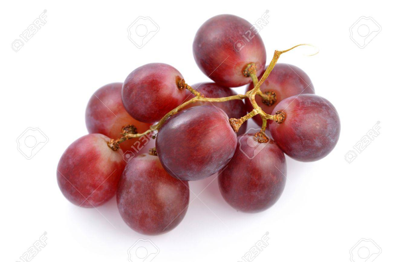 A string of grapes isolated on white background. - 9865082