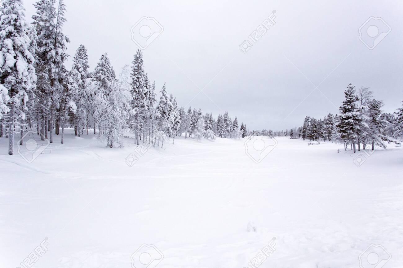 A frozen landscape in lapland during winter - 144715860