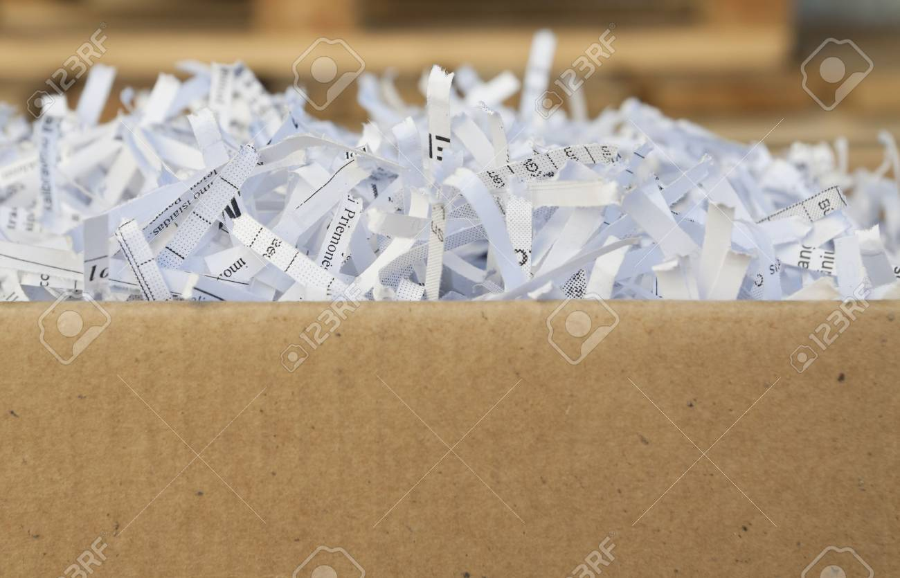 Close up of shredded waste paper strips - 9152809