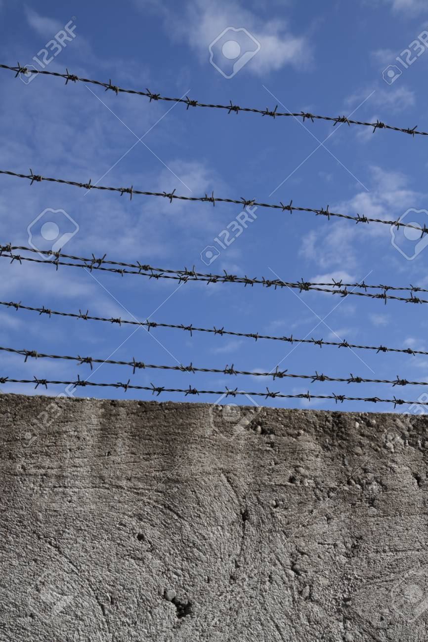 Barbed wires and blue sky Stock Photo - 12843015