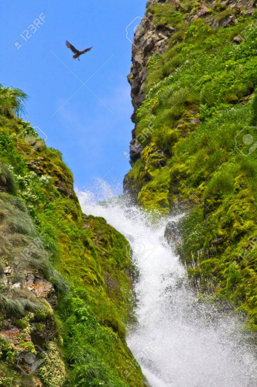 Water falls in waterfall, beauty in nature. Stock Photo - 10672045