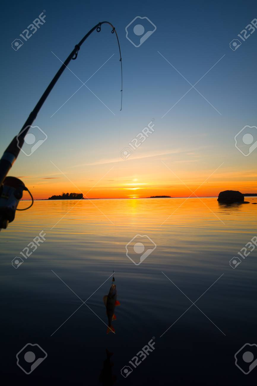 summer catching fishing of a perch in the evening - 42498957