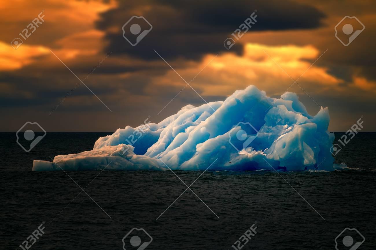Arctic iceberg ice stock area Novaya Zemlya. array of ice floating in ocean - 79107378