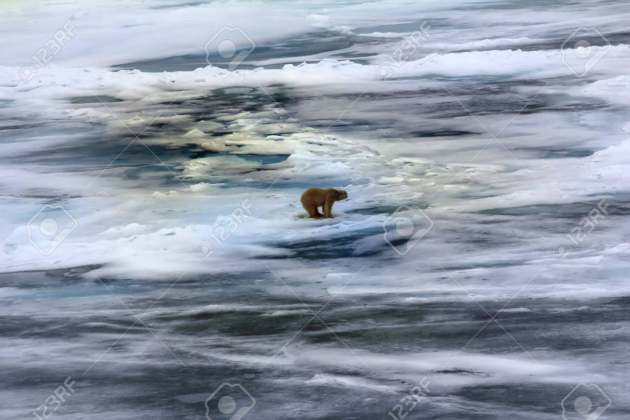Nordpol loch