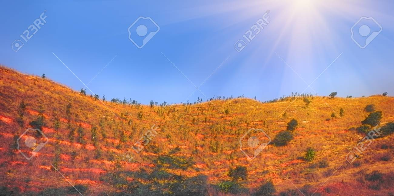 the deccan plateau