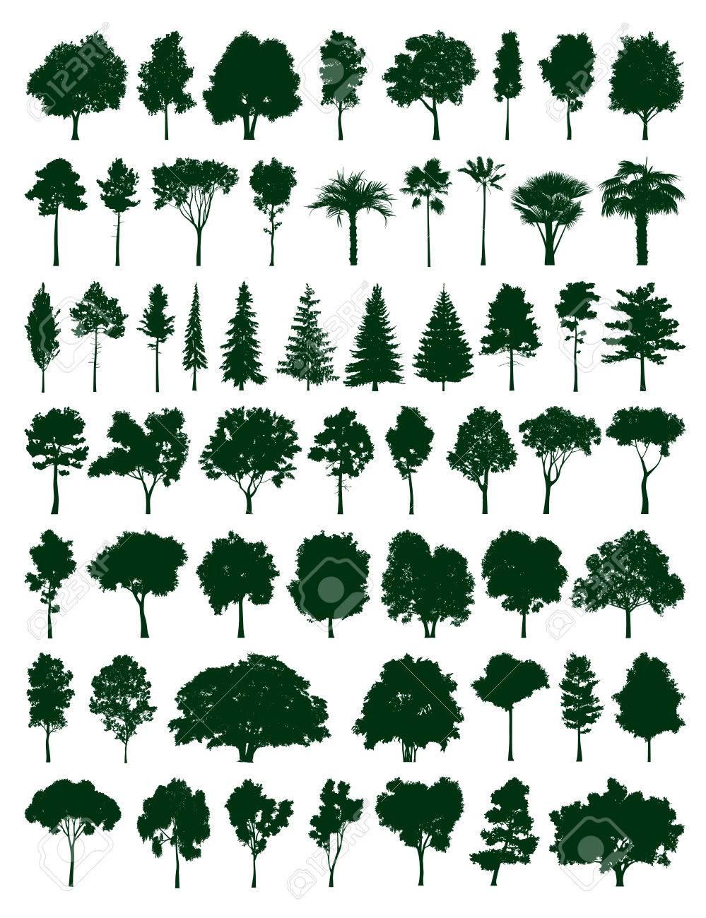 Trees set - 47274128