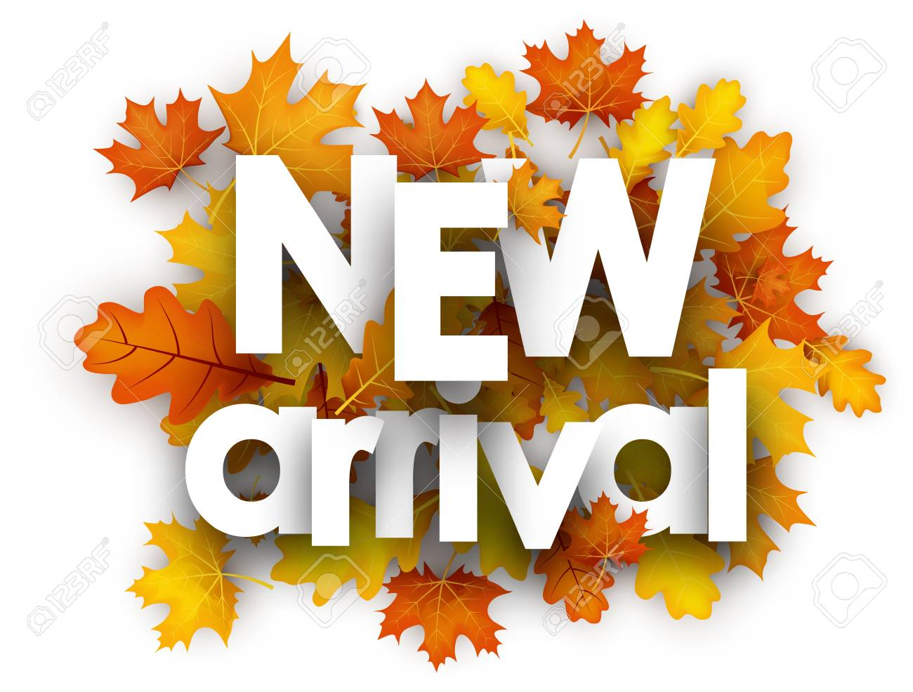 New arrival autumn card with golden maple and oak leaves. Vector illustration. - 84990991
