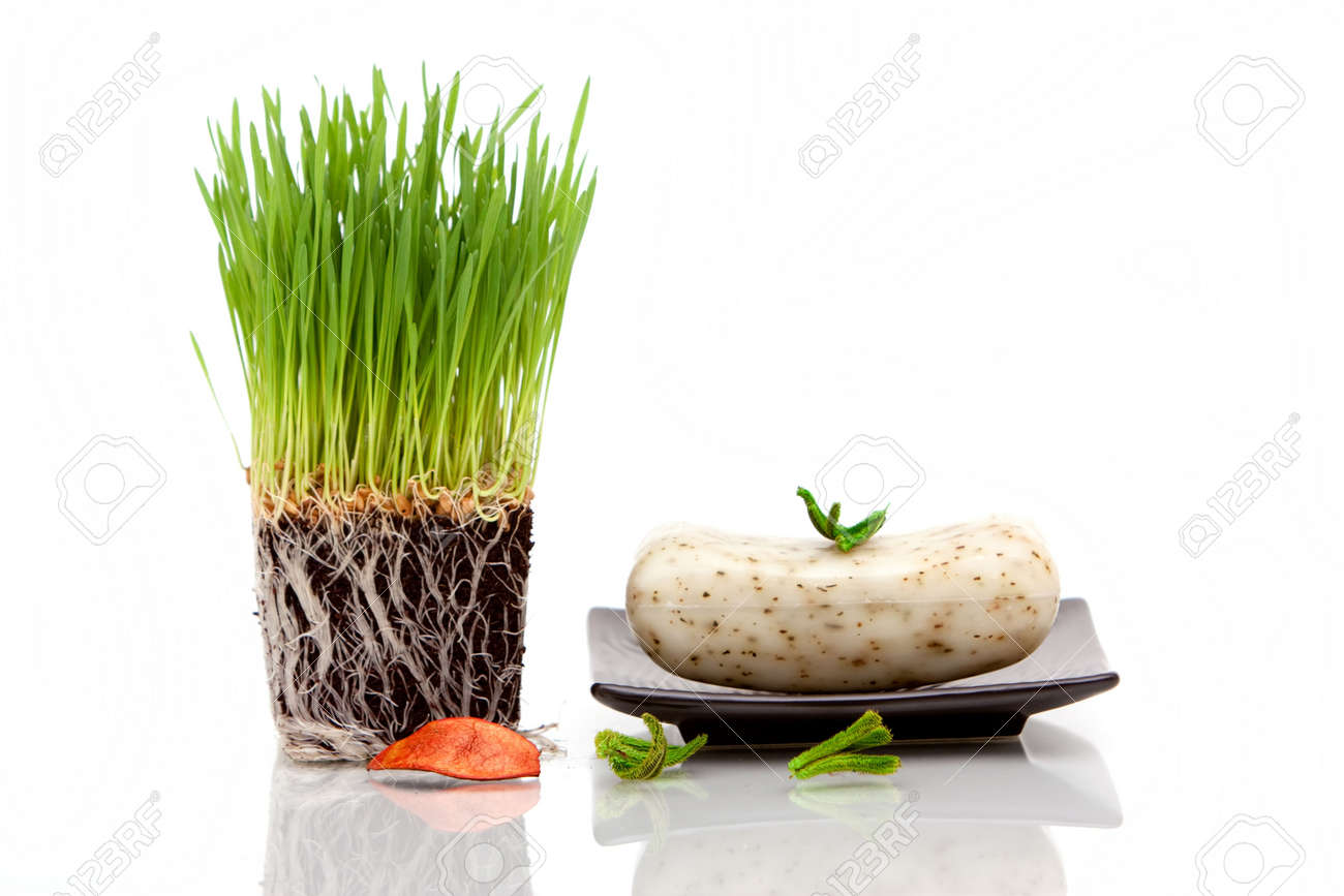fresh wheatgrass and bar of soap for spa decor stock photo 5989916 - Spa Decor