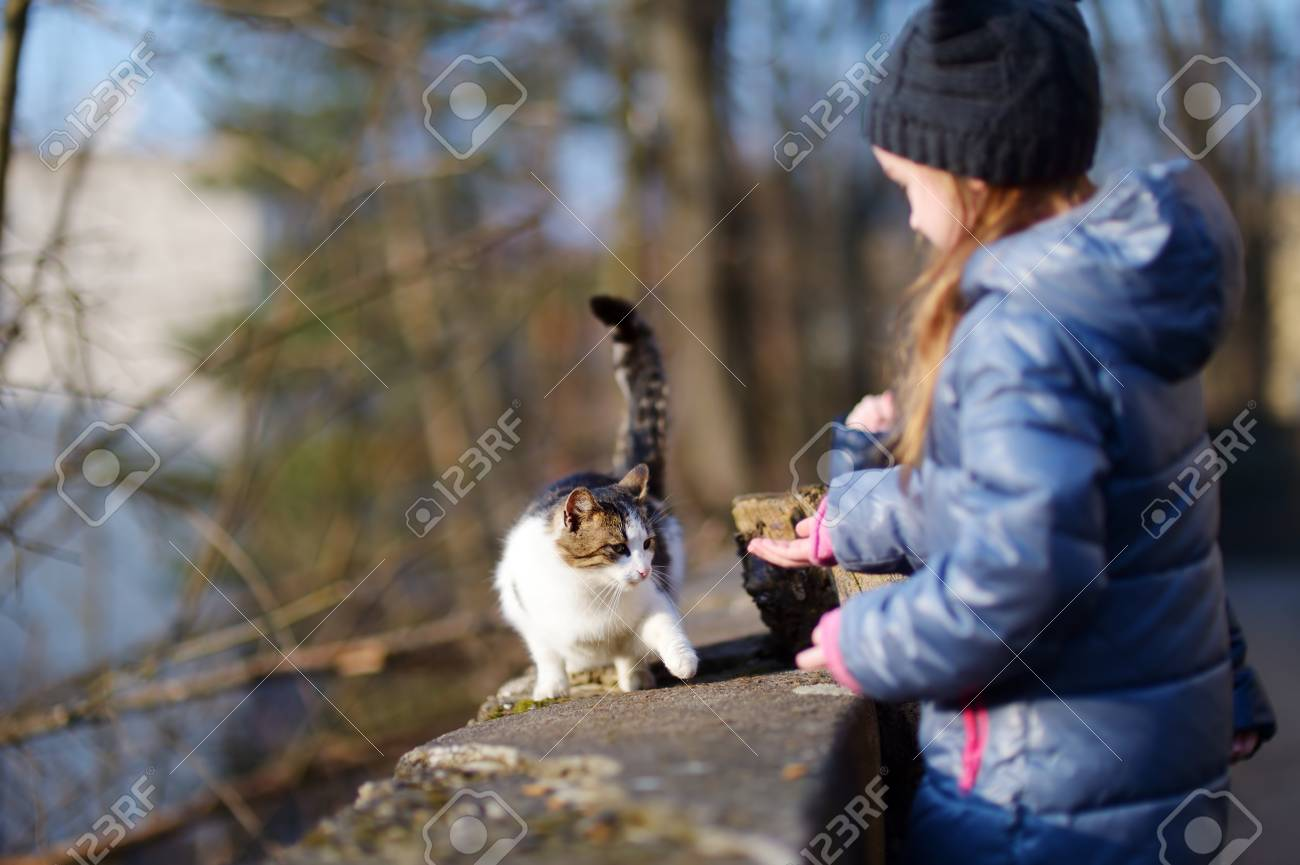 chat rencontre fille)