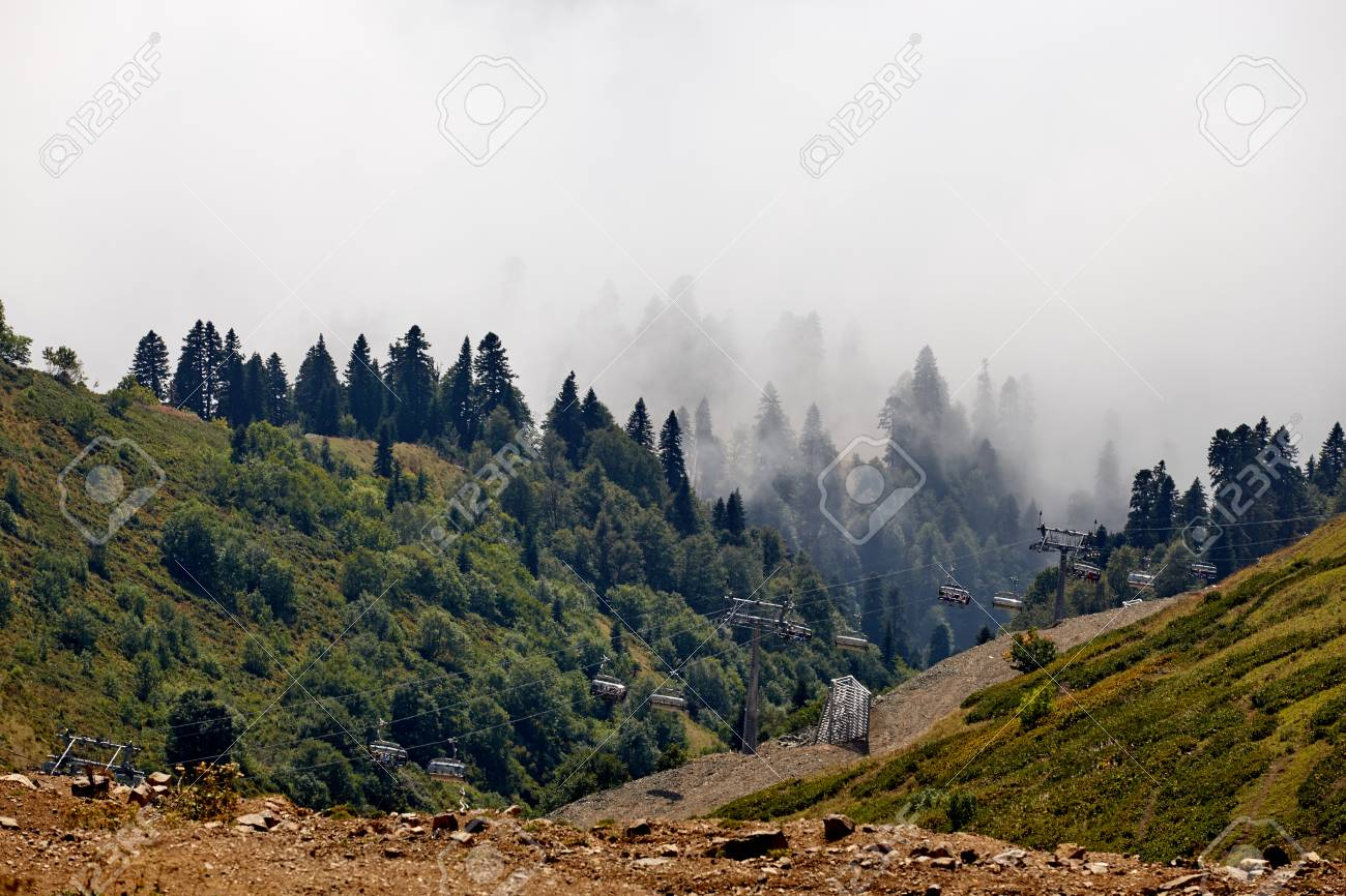 Beautiful Mountain Forest Landscape Stock Photo Picture And