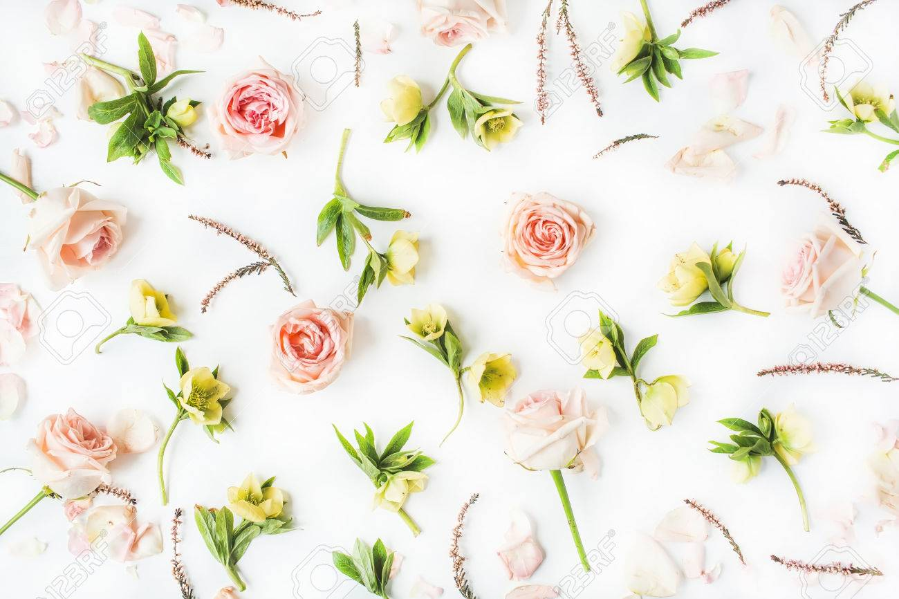 Wallpaper Texture Pink Roses And Yellow Flowers On White