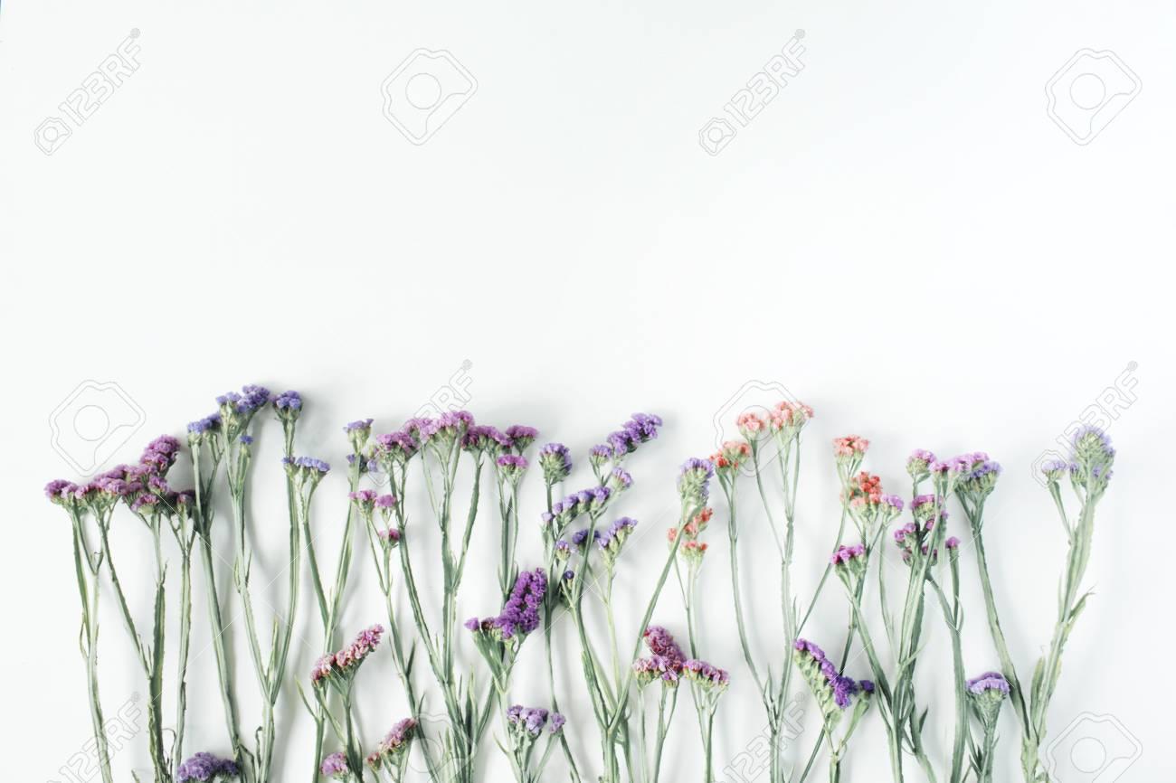白い背景のドライフラワー 秋フラット レイアウト平面図の壁紙 の写真