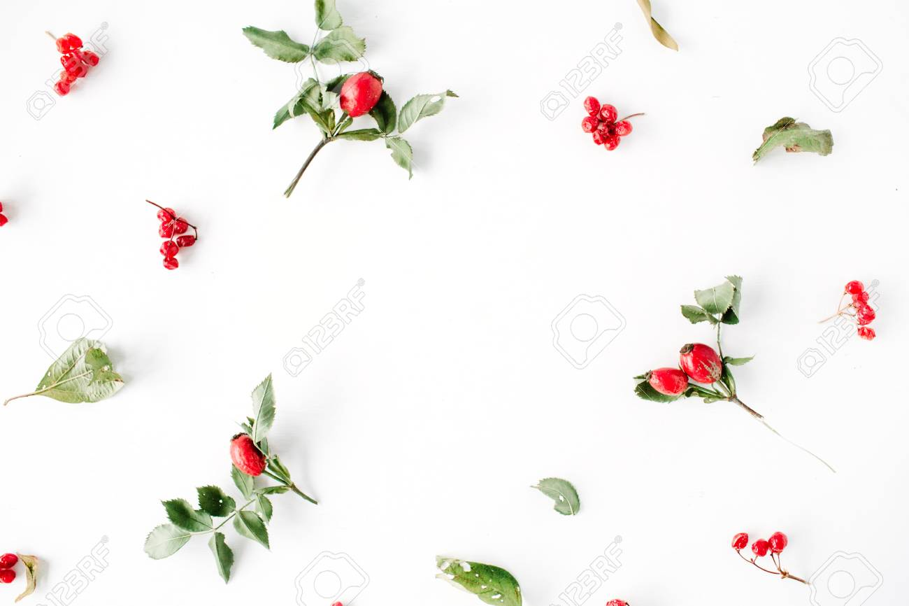 Floral Frame With Minimal Creative Berry Arrangement Pattern