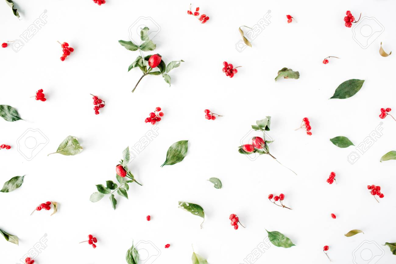 Minimal Creative Berry Arrangement Pattern On White Flat Lay Top View Christmas Background