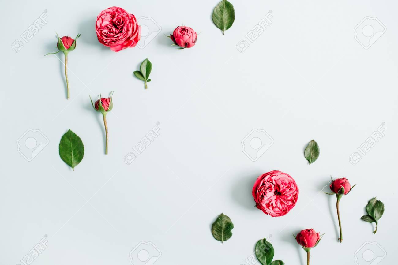 Las Flores Enmarcan El Marco Hecho De Rosas Rojas En Fondo Azul En ...