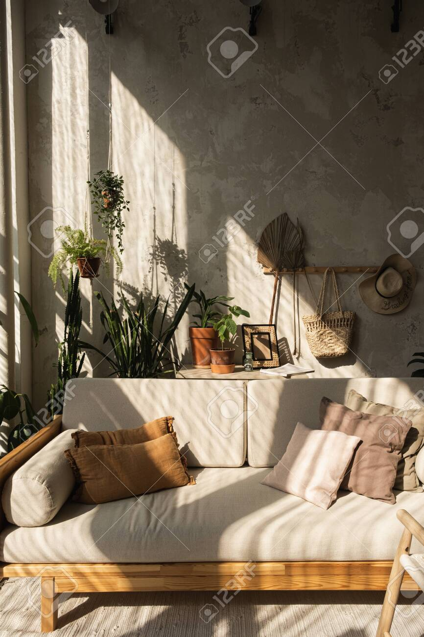 Boho Style Modern Home Interior Design Sofa Pillows Home Plants Stock Photo Picture And Royalty Free Image Image 158676392