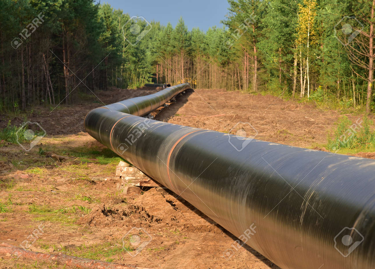 Natural gas pipeline construction work in forest area. Installation of gas and crude oil pipes. Construction of gas pipes to new LNG plant. - 157561953