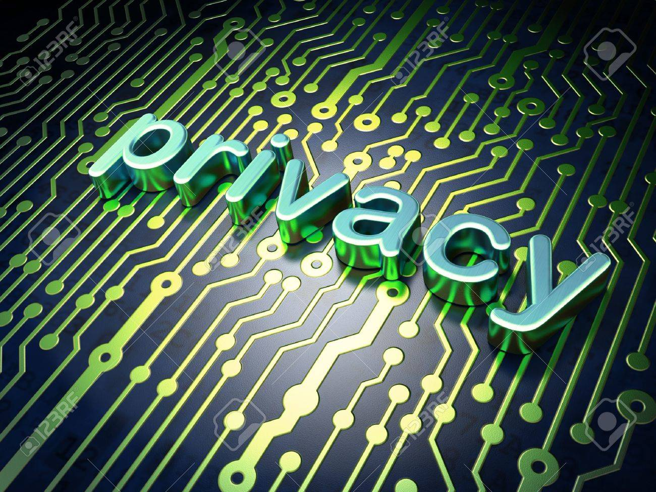 Privacy concept circuit board with word Privacy, 3d render - 17549356