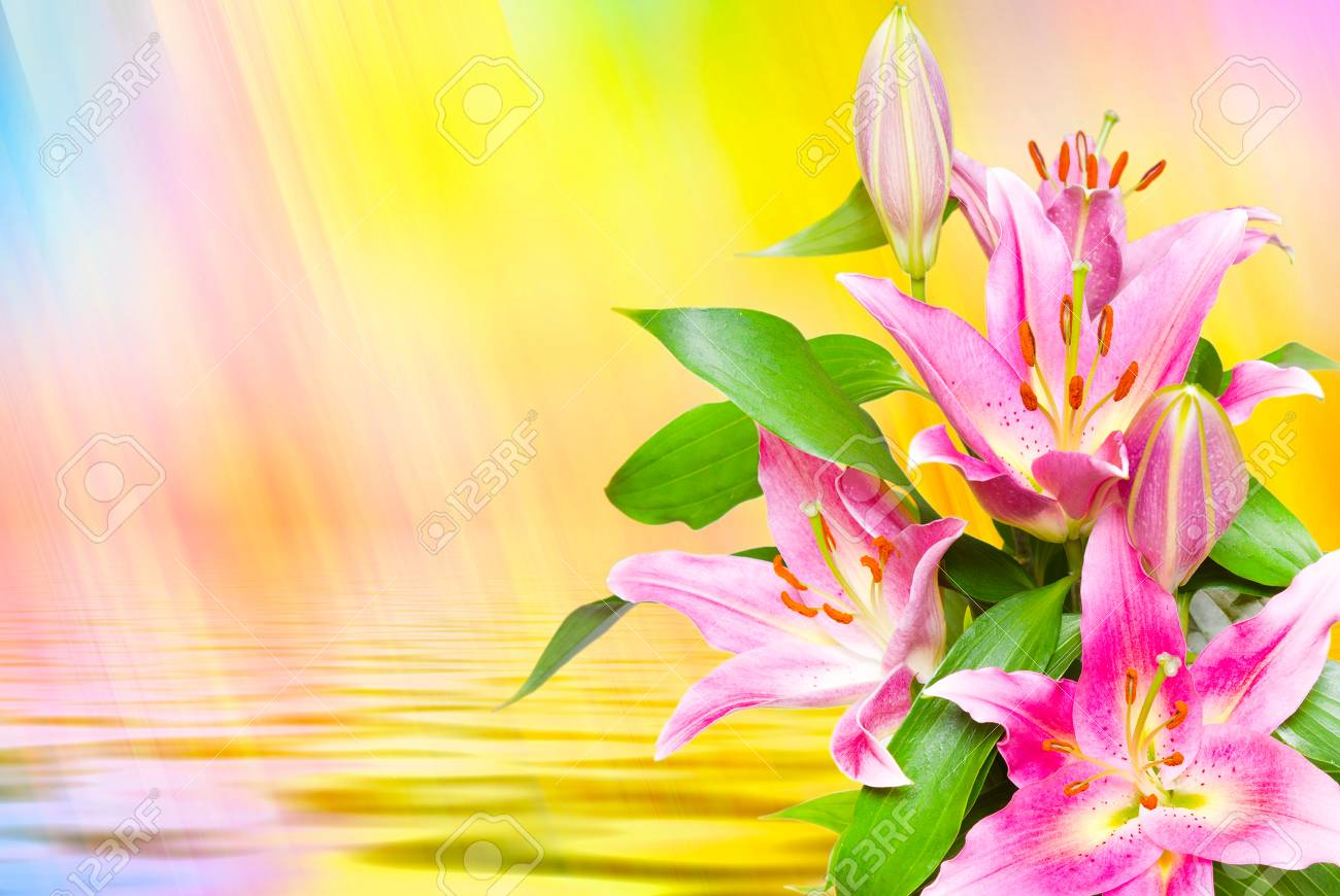 Close up of beautiful pink lilies flowers stock photo picture and close up of beautiful pink lilies flowers stock photo 60965468 izmirmasajfo