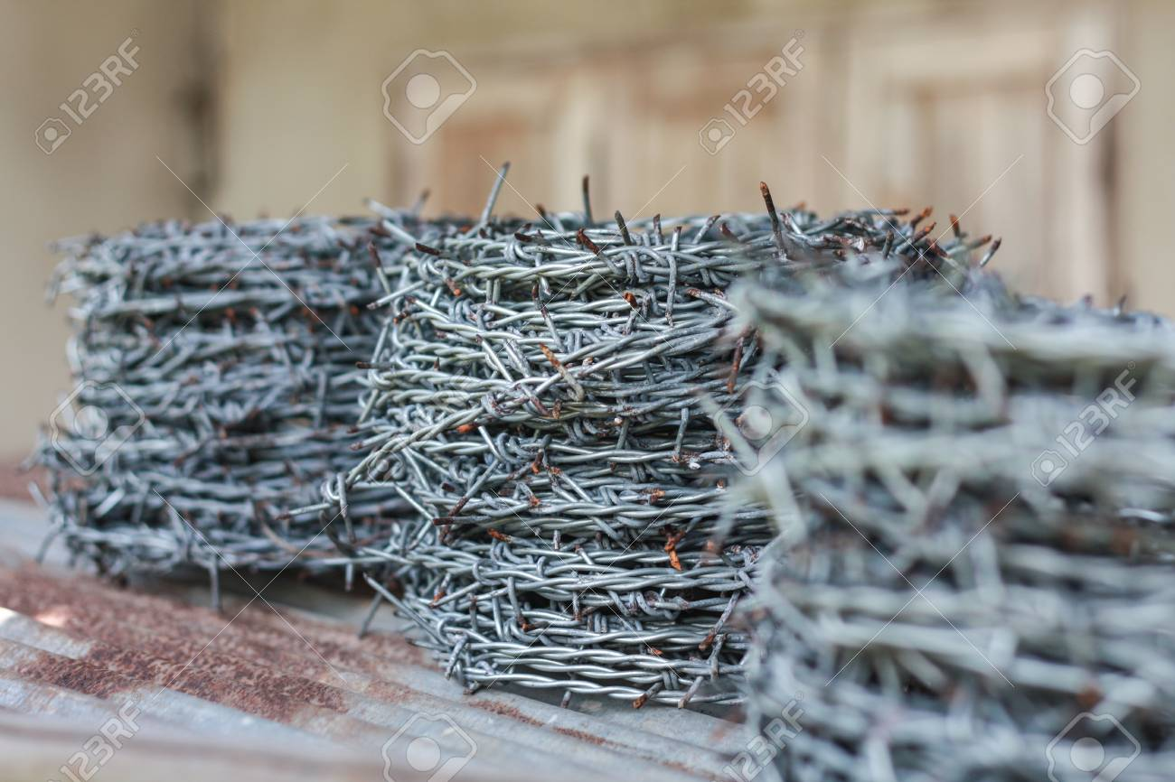 Roll Of Barbed Wire Stock Photo, Picture And Royalty Free Image ...
