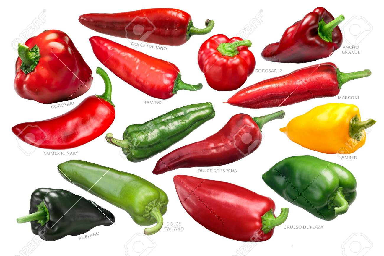 Sweet and bell peppers collection (non-pungent Capsicum annuum spp. fruits), whole pods - 106362483