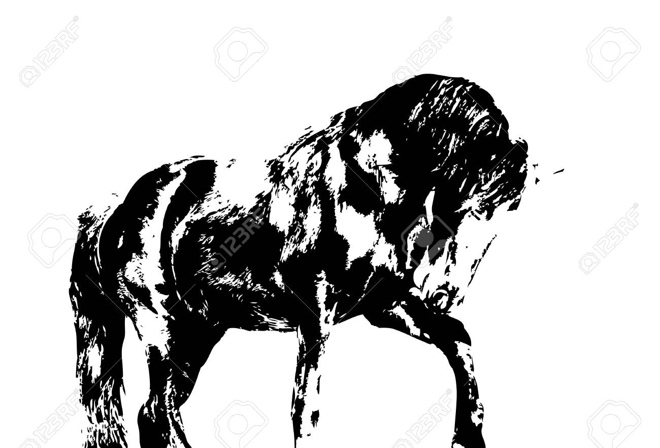 Colorful Horse Art Illustration Grunge Painting Stock Photo Picture And Royalty Free Image Image 151171475