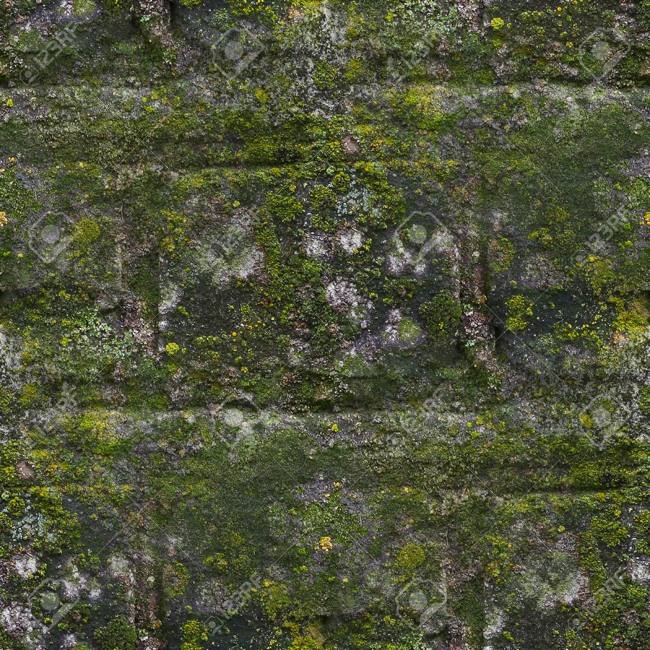 Seamless Moss Old Green Wall Stone Pattern Mold Gray Texture Background Rock Brick Fungus Stock Photo