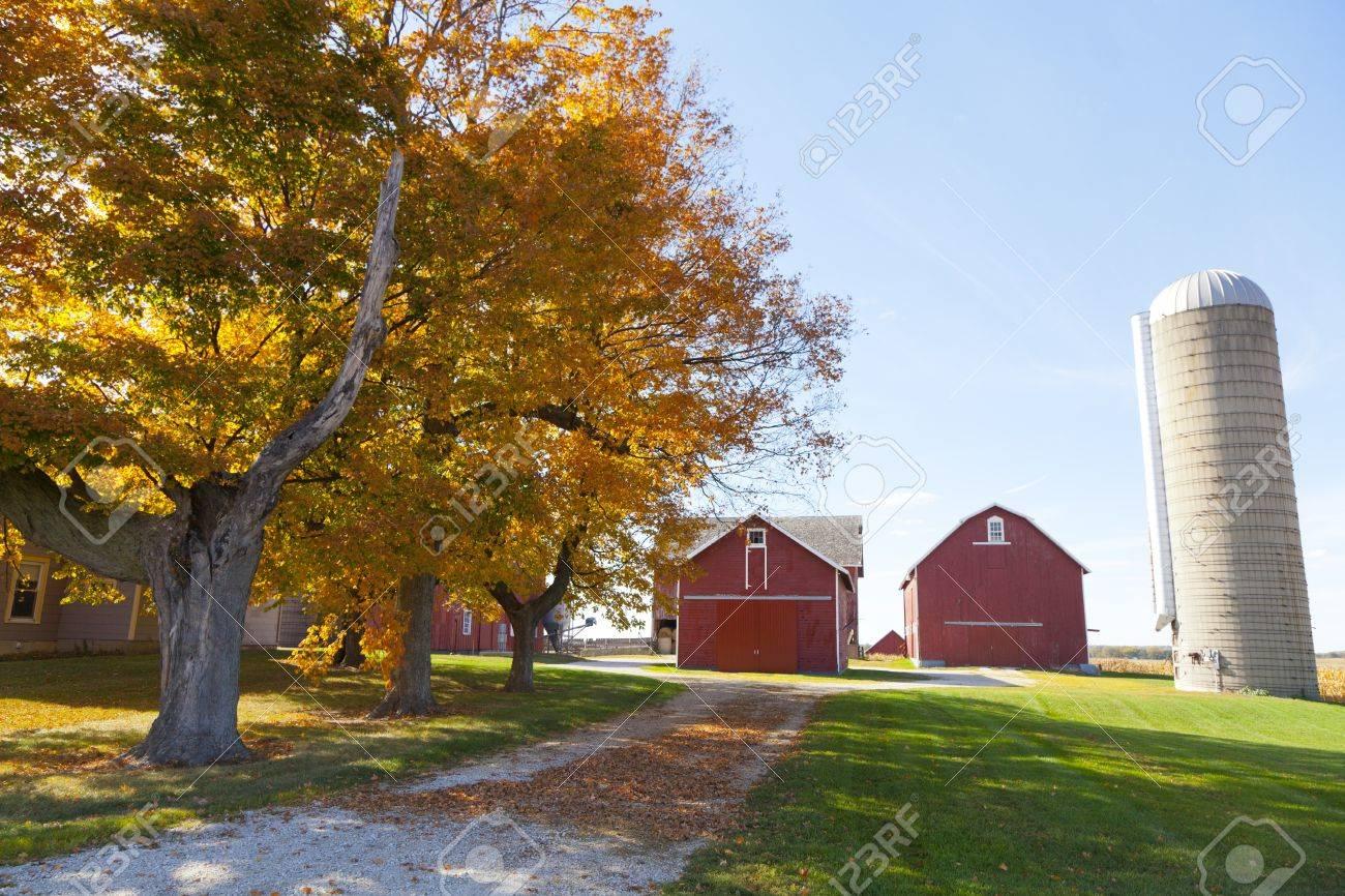 Traditional American Barn (Autumn Season) Stock Photo - 15949226