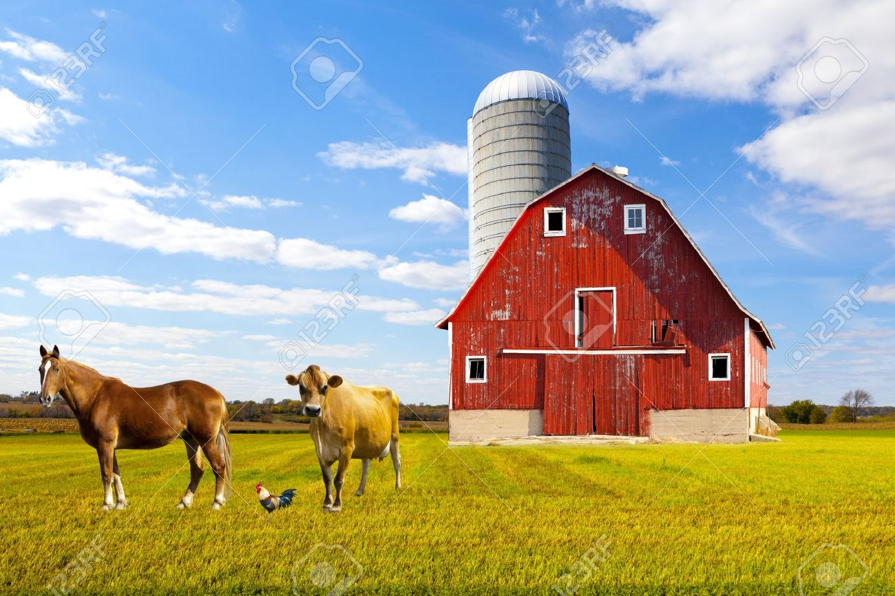 Farm Barn american countryside red farm with blue sky stock photo, picture