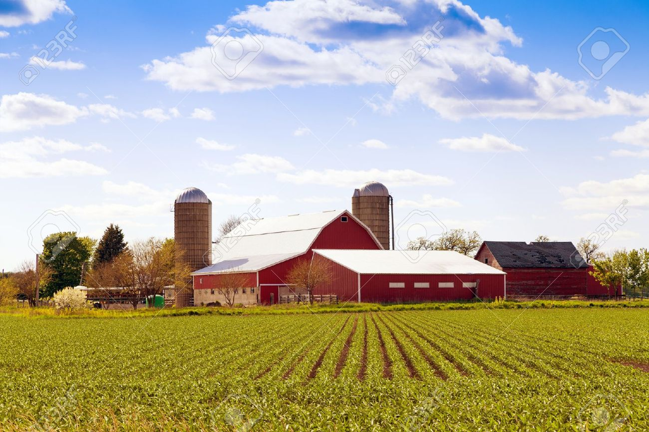 Stock Photo - Traditional American Farm With Blue Sky